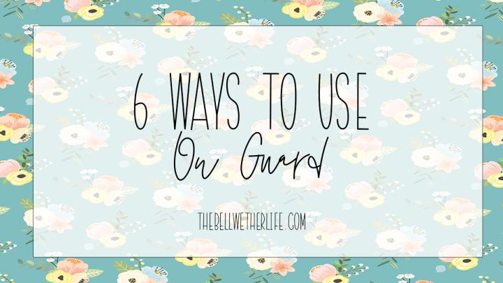 6 Ways To Use OnGuard
