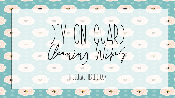 DIY On Guard CleaningWipes