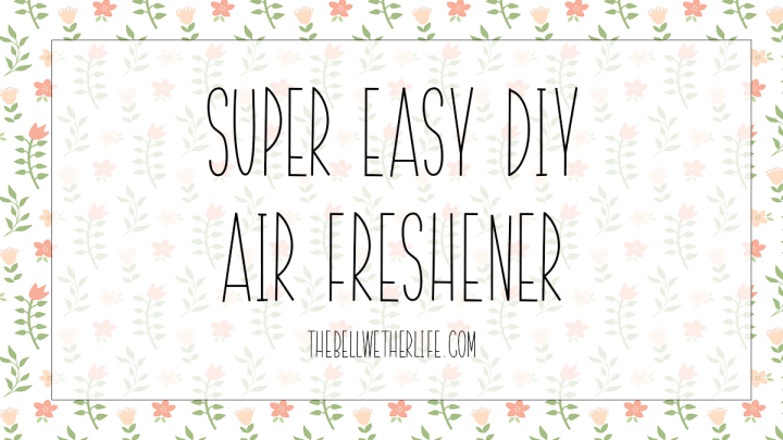 Super Easy DIY Air Freshener
